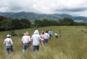 ganadería en Colombia