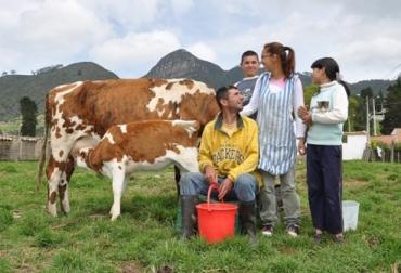 Una vaca por la paz de Fundagán