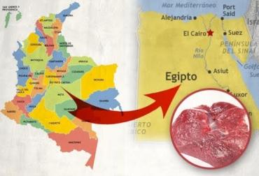 exportaciones de carne colombia a egipto