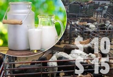 incentivos ganaderos Colombia