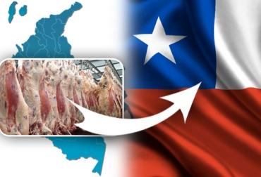 Colombia exportará carne a Chile, 2 plantas de Colombia exportarán carne a Chile, SAG autorizó exportar a 2 plantas de beneficio