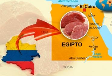 exportaciones de carne a Egipto, trabajo de Fedegán y FEP,  admisibilidad sanitaria, carne bovina, trabajo público – privado, reapertura del mercado egipcio, ganaderos de Colombia, sector cárnico de Colombia, CONtexto ganadero.