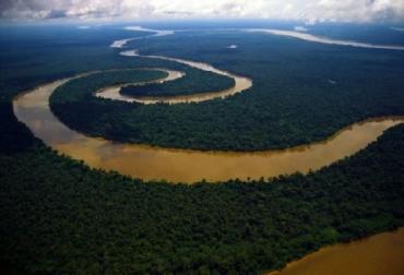biodiversidad, IPBES,  Colombia, deforestación, CONtexto ganadero, ganadería Colombia, Noticias ganaderas Colombia