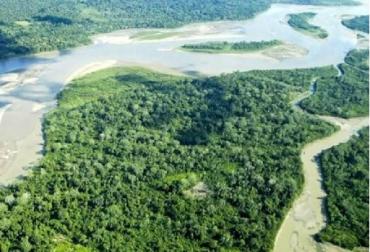 Perú, deforestación, magnitud de la deforestación en Perú, CONtexto ganadero, ganadería Colombia, Noticias ganaderas Colombia