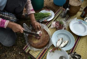 consumo de pescado, consumo de pescado al 2030, aumentará consumo de pescado en  América Latina y el Caribe, Ganadería, ganadería colombia, noticias ganaderas, noticias ganaderas colombia, CONtexto ganadero
