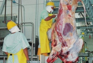 Brasil, producción total de carne vacuna, exportación de carne vacuna, Brasil exportó en 2018, el 26% de su producción de carne vacuna, Hong Kong y China son los principales destinos para la carne brasileña , contexto ganadero, noticias ganaderas, carne