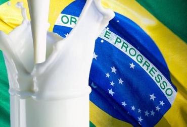 Brasil, Brasil industria láctea, Brasil, importaciones, Brasil protegerá a su industria láctea solo si hay invasión de importación Contexto ganadero, noticias ganaderas, vacas