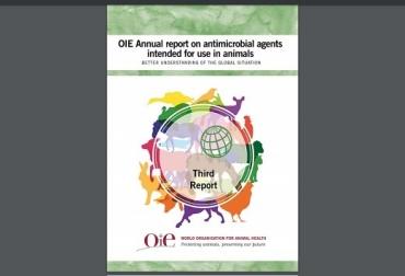 OIE, OIE Annual report on antimicrobial agent intended por use un animals, promotores de crecimiento, regulaciones sobre el uso de agentes antimicrobianos, Contexto ganadero, noticias ganaderas, bovinos