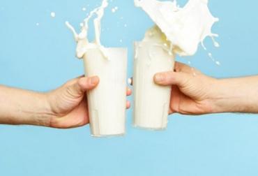 Ganadería, ganadería colombia, noticias ganaderas, noticias ganaderas colombia, CONtexto ganadero, méxico, leche México, autosuficiencia lechera méxico, consumo leche, consumo leche méxico, femeleche, femeleche méxico, Subsecretaría de Autosuficiencia Alimentaria, producción leche méxico, importaciones de leche en polvo méxico