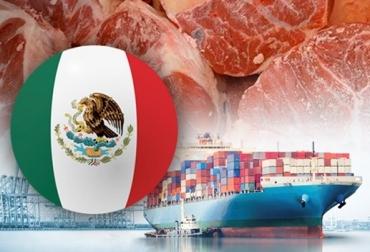 México, exportaciones, exportaciones industria cárnica, México exportaciones 2019, producción bovina, CONTexto ganadero, noticias ganaderas