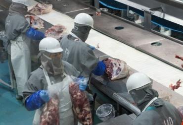 Ganadería, ganadería colombia, noticias ganaderas, noticias ganaderas colombia, CONtexto ganadero, méxico, carne México, producción carne méxico, envío de carne de méxico a china, exportación de carne méxico, SENASICA