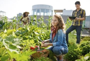 Ganadería, ganadería colombia, noticias ganaderas, noticias ganaderas colombia, CONtexto ganadero, jóvenes en el campo, jóvenes agricultura, agricultura, relevo generacional, jóvenes por el campo, innovación, innovación agricultura, Tecnología