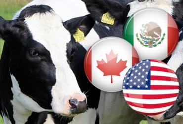 estados unidos, Canadá, méxico, protección, Producción pecuaria, Comité de Salud Animal de América del Norte, lineaminetos, Salud Animal, inocuidad, problemas sanitarios, Ganadería, ganadería colombia, noticias ganaderas colombia, CONtexto ganadero