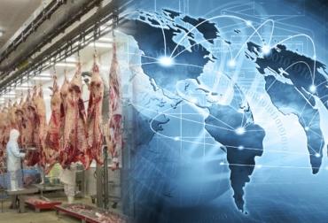 Mercado mundial de carne de res, consumo de carne de res en Colombia, producción de carne bovina en Colombia, importacion de carne en Colombia, analisis del sector carnico en Colombia, exportacion de carne en Colombia, produccion de carne de res en Colombia, produccion mundial de carne bovina, ganado bovino, ganadería bovina, Ganadería, ganadería colombia, noticias ganaderas, noticias ganaderas colombia, CONtexto ganadero, contextoganadero