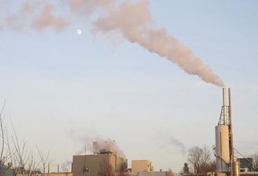 Ganadería, ganadería colombia, noticias ganaderas, noticias ganaderas colombia, CONtexto ganadero, gases de efecto invernadero, dióxido de carbono, secuestro dióxido de carbono, Países Bajos, absorción dioxido de carbono