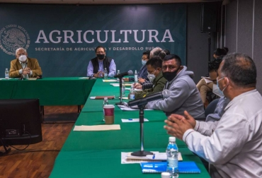 Ganadería, ganadería colombia, noticias ganaderas, noticias ganaderas colombia, CONtexto ganadero, méxico, programa apoyo producción méxico, producción méxico, agro méxico, respaldo agro mexicano