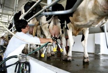 Proleco, Conaprole, BID Invest, crédito, Uruguay, industria láctea, financiamiento, tasas de interés, periodo de gracia, producción de leche, precio al productor, vacas, Infraestructura, Capital de Trabajo, maquinaria, Objetivos de Desarrollo Sostenible, Ganadería, ganadería colombia, noticias ganaderas colombia, CONtexto ganadero