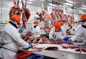 Ganadería, ganadería colombia, noticias ganaderas, noticias ganaderas colombia, CONtexto ganadero, argentina, carne Argentina, cortes de carne argentina, exportaciones de carne argentina, restricciones a las exportaciones de carne en argentina, ganadería Argentina, cortes que no puede exportar argentina