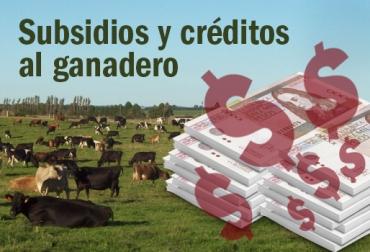 subsidios y créditos