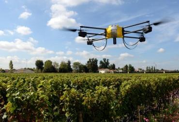 drones vinos