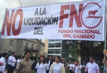 Liquidación FNG