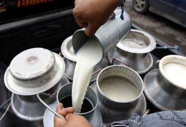 crisis lechera, crisis lecheros, crisis lecheros en colombia, soluciones a crisis de los lecheros, alternativas crisis lechera, ministerio de agricultura, ganadería colombia, contexto ganadero