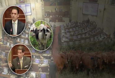 Fondo Nacional del Ganado, Fedegám CNCL, ganadería, bovinos, ganadería colombia, colombia, ganadería colombiana sostenible, ganadería sostenible, agricultura colombia, noticias de ganadería colombiana, ferias ganaderas, ferias ganaderas colombia, hablemos de leche, hablemos de carne, ganaderos, leche, precio de la leche, precio de la carne, precio del ganado, producción leche, carne bovina, carne res, forrajes, pastos, alimentación bovina, subastas ganaderas, reproducción, reproducción bovina, cuidado bovin