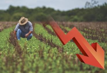 Presupuesto agro 2022, presupuesto Ministerio de Agricultura 2022, presupuesto Colombia 2022, presupuesto, sector agropecuario, Minagricultura, ICA, Agencia Nacional de Tierras, agencia de desarrollo rural, funcionamiento, Inversión, Infraestructura, comercialización, ganado bovino, ganadería bovina, carne, leche, ganaderos, ganaderos colombia, ganado, vacas, vacas Colombia, bovinos, Ganadería, ganadería colombia, noticias ganaderas, noticias ganaderas colombia, CONtexto ganadero, contextoganadero