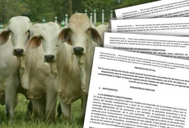 Ministerio de agricultura y Fedegán trabajan en proyecto de reconversión ganadera