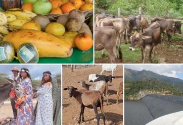 La Guajira Colombia situación crisis verano niño desnutrición