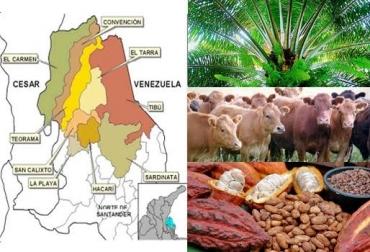 Colombia bronx Catatumbo