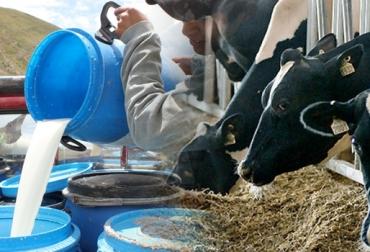 Estructura de costos en lechería, Lechería de trópico bajo, lechería de trópico alto, rentabilidad de las ganaderías de leche, ganadería de leche en Colombia, cómo mejorar rentabilidad en ganadería de leche, porcentajes de la estructura de costos de ganadería en Colombia, precio del litro de leche en Colombia, Antioquia, Valle del Cauca, Santa Rosa de Osos, Cartago, CONtexto ganadero, ganaderos Colombia