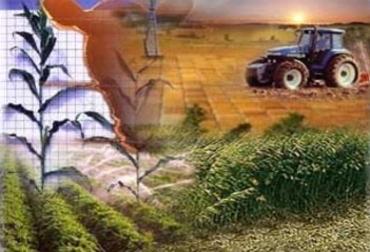 Empresa agropecuaria en Colombia
