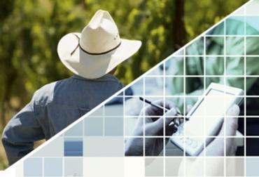 La llegada de las rede 4G beneficia al agro en Colombia