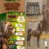 Ganadería, ganadería colombia, Ganadería colombiana, CONtexto ganadero, noticias ganaderas, noticias ganaderas colombia, córdoba, ganaderos córdoba, feria equina cordoba, feria equina monteria, feria agroindustrial equina garado b monteria, ganaderos, ganaderos colombia